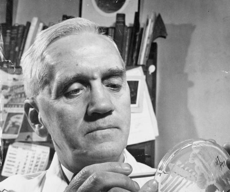 Sir Alexander Fleming discovered world's first antibiotic by accident - after finding mould growing in a culture dish. Image: Ministry of Information Photo Division Photographe, via Wikimedia Commons
