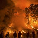 California wildfires: Should US policy turn over a new leaf?