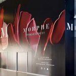 Morphe Store opens in Intu Eldon Square