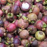 The benefits of purple foods
