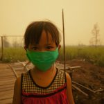 Childhood exposure to air pollution increases chances of adult heart disease