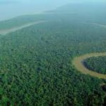 Increased risk of bacterial diseases due to Amazon deforestation