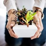 Why plants make us happy