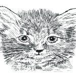You've got a trend in Me: Kitten Heels