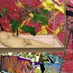 SWEET COLUMN: Contemporary Conceptualism