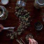 High Time: Legalisation of Marijuana in the UK?