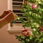 The Trafalgar Square Christmas Tree