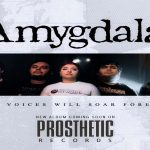 Amygdala might just be the best new band you've never heard of