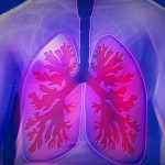 Fat found in overweight people's lungs