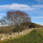Newcastle University helps to save Hadrian's Wall