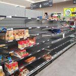 CoronaWHYrus: the idiocy of stockpiling