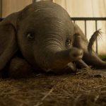 Fly, CGI Dumbo, fly!