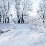 Combatting the January blues