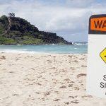 Australian surfer dies in a shark attack