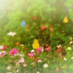 Biodiversity loss: An irreversible threat?
