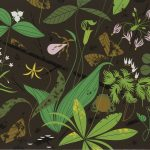 Naturally gifted: the art and legacy of Charley Harper