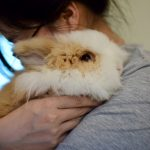 A look at the bunnies that helped us get through 2020