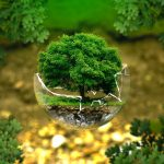 Restoring our planet for those who come after us