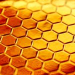 Radioactive fallout from nuclear bomb testing detected in US honey