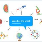 Word of the week: 'Ipsedixitism'